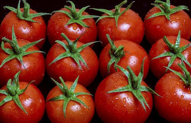 Orosené paradajky.jpg